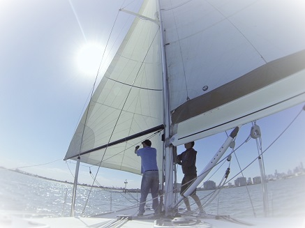 Learn to sail Course 6 Crew roles and yacht racing